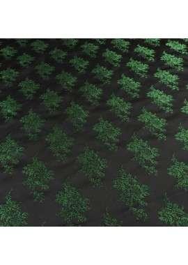 Brocado verde filigrana